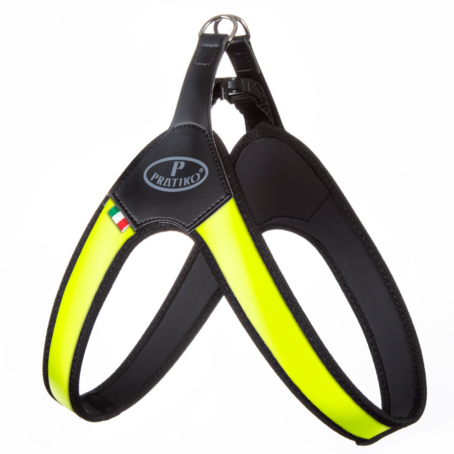 Pettorina Neoprene Fashion