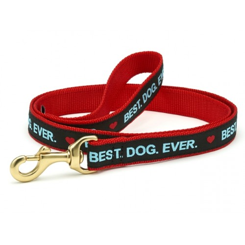 Best Dog Ever Lead
